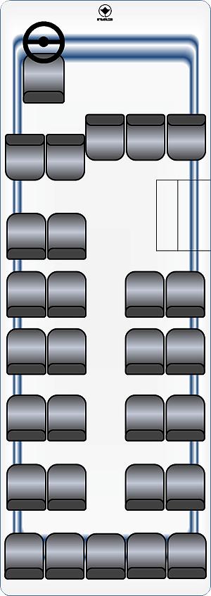 мест в автобусе ПАЗ-3205