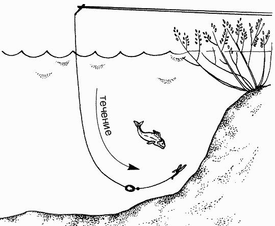 Комбинированная удочка для ловли окуня под кустами