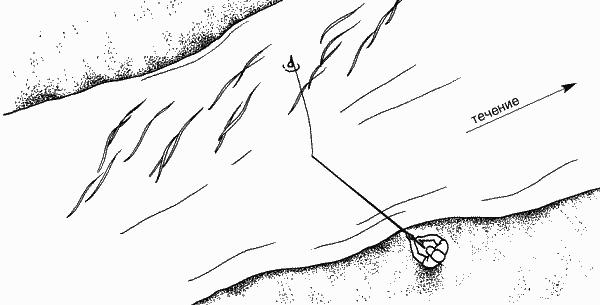 Ловля впроводку между водорослями, растущими у противоположного берега