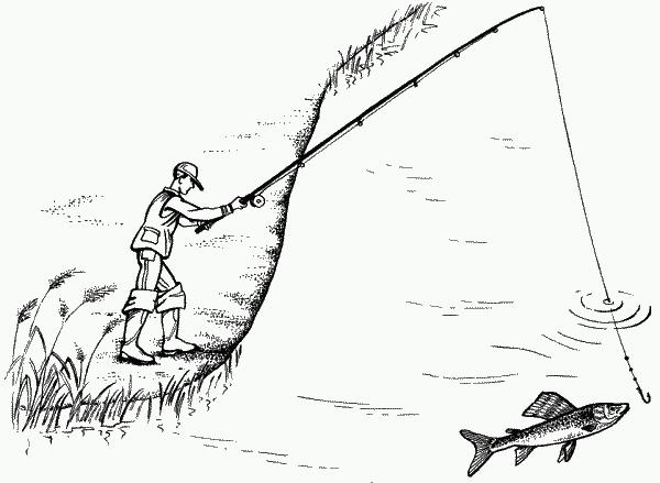 Ловля хариуса на удочку с гибкой вершинкой без поплавка