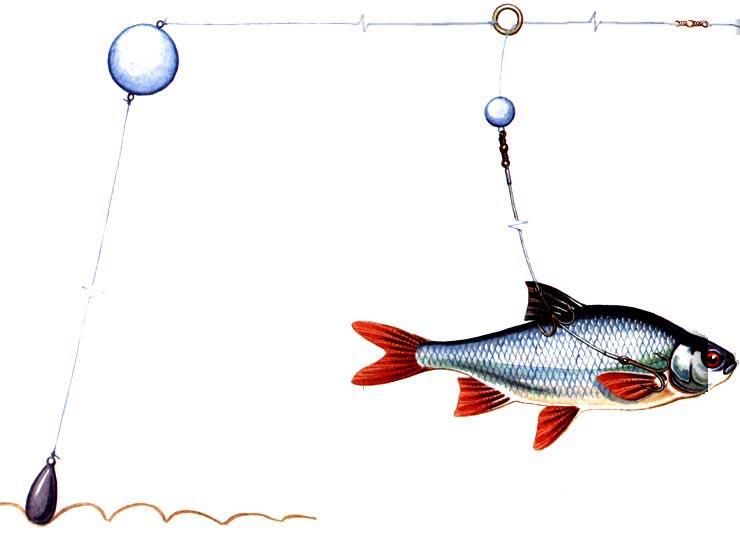рыболовные снасти для ловли на живца