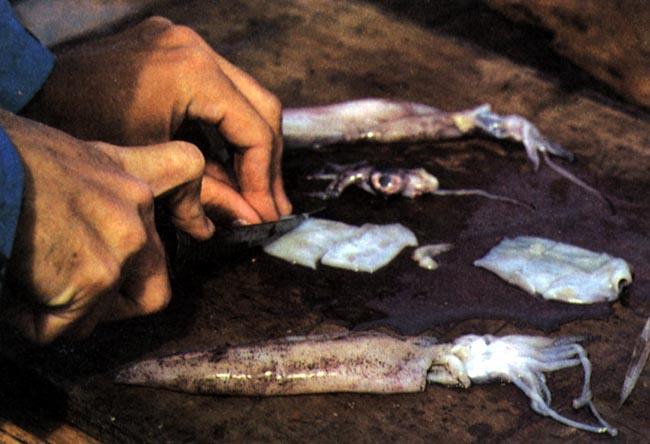 паразиты в кальмарах опасные для человека