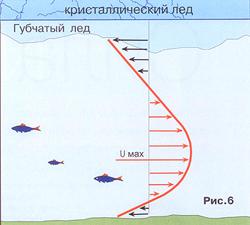 трава для ловли рыбы