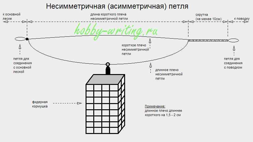 Схема асимметричной петли